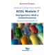 ECDL modulo 7: Navigazione Web e Comunicazione (ebook)