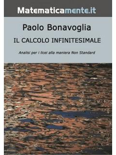 Il Calcolo Infinitesimale Non Standard (ebook)
